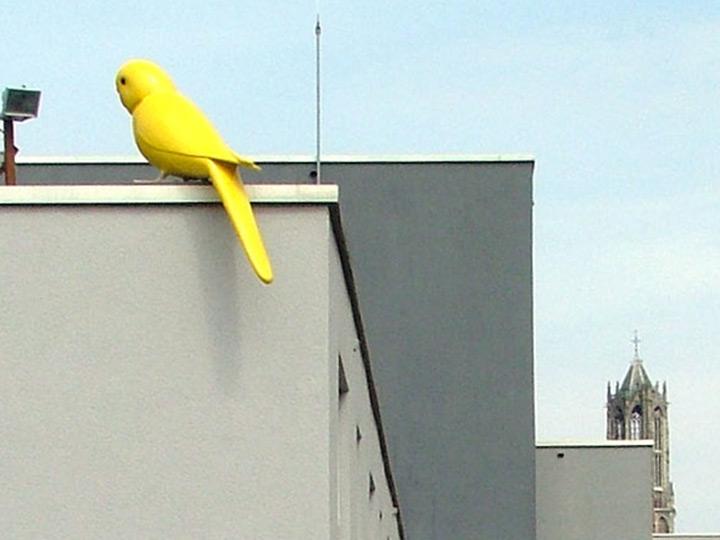 birdsculpture in public space utrecht