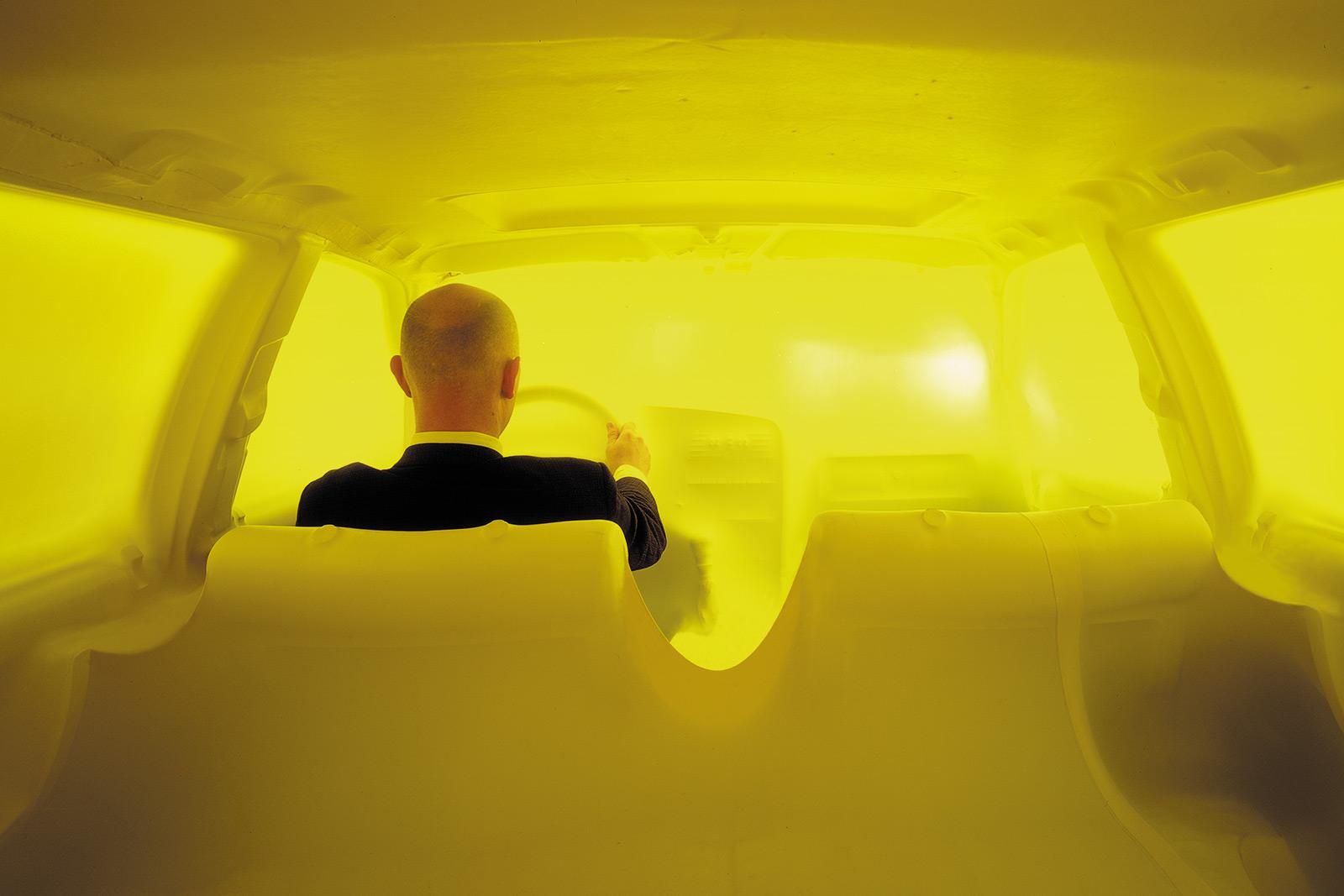 carsculpture, quarantine, skin, isolation